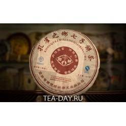 Пу Вэнь «Кун Цюэ Чжи Сян»